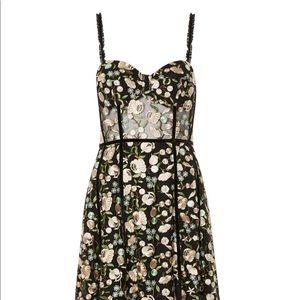 Topshop Embroidered Floral Corset Dress